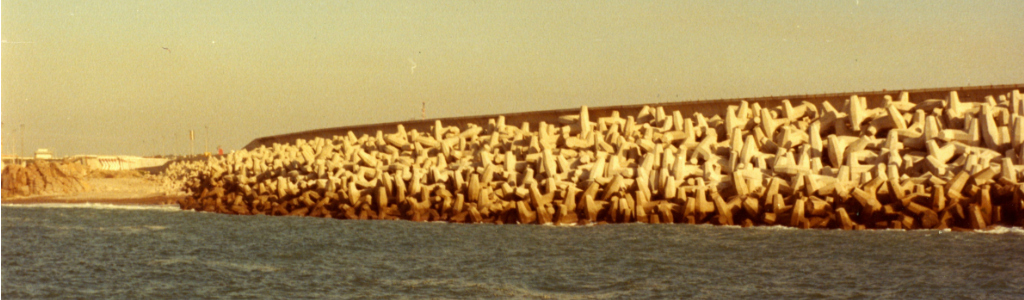 ScoglieraSines1981